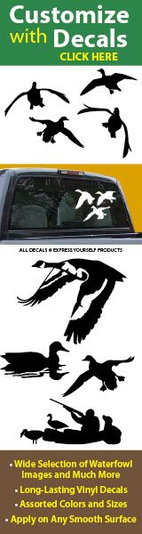 Duck Decals